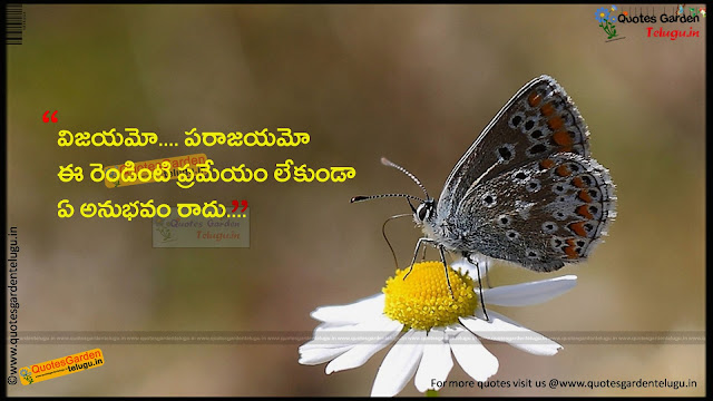 Best quotes about victory and experience in telugu