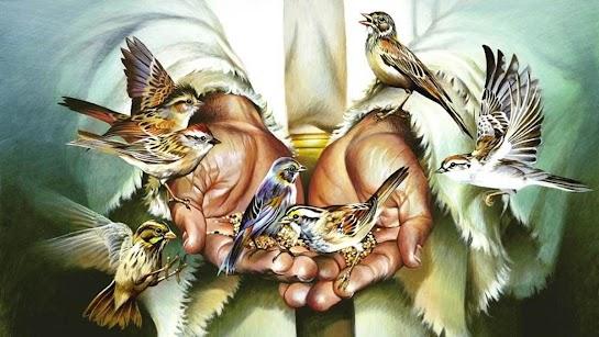 Chúa biết rõ và chăm lo cho chúng ta