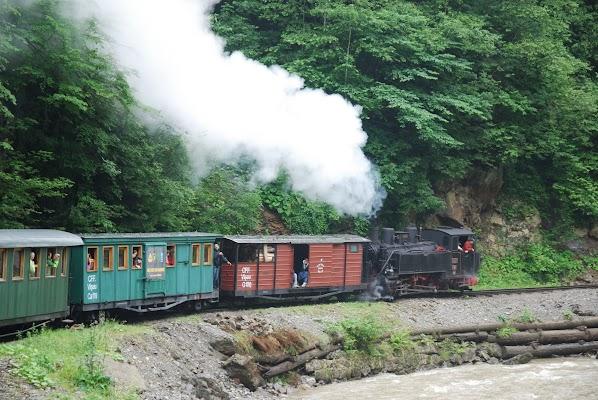 Waldbahn im Wasser-Tal