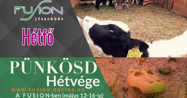 Pünkösd hétvége programok Kaposvár 2016