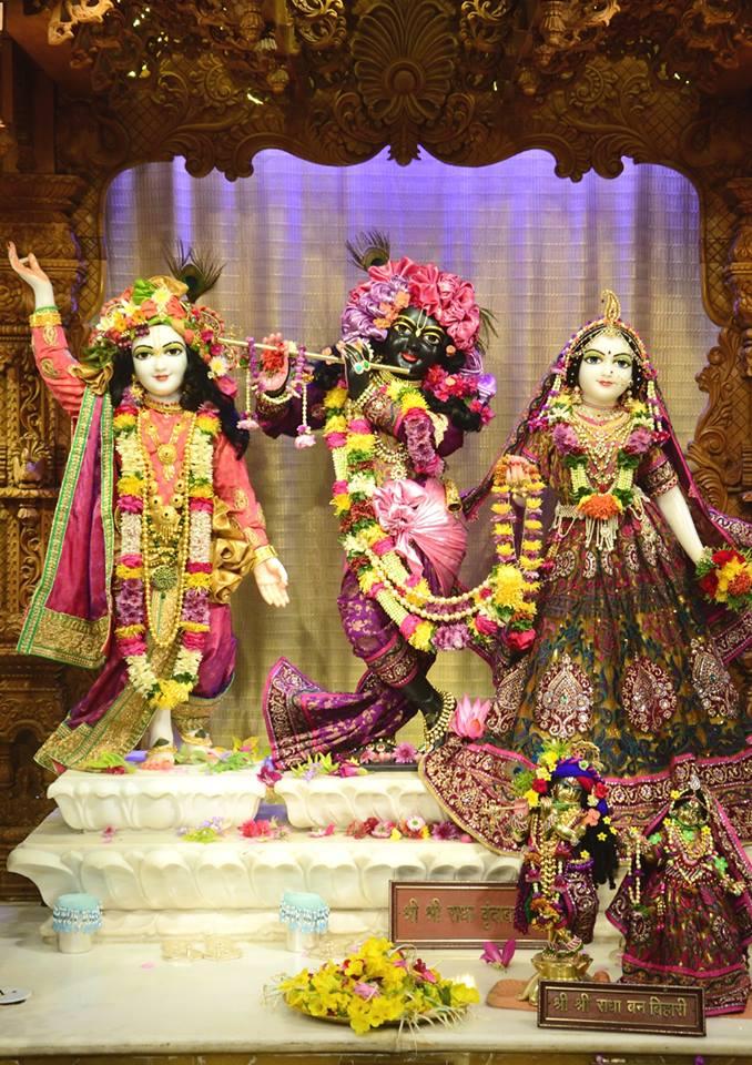 ISKCON GEV Deity Darshan 02 jan 2017 (14)