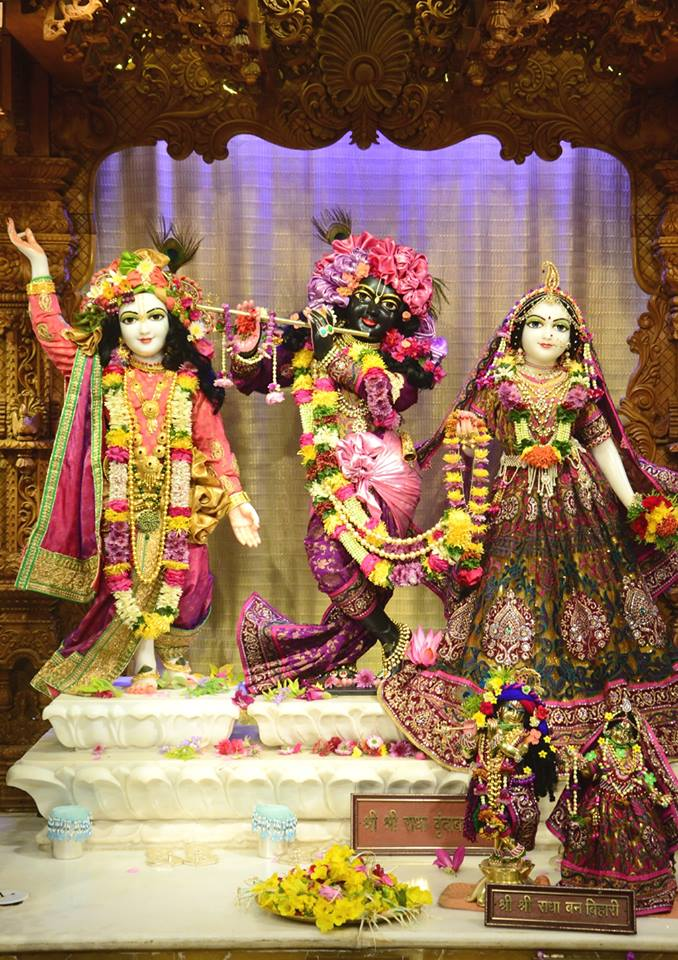ISKCON GEV Deity Darshan 02 jan 2017 (14)