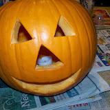 Halloween 2013 - 115_8452.JPG