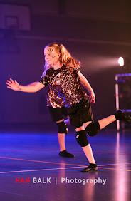 Han Balk Voorster Dansdag 2016-5005-2.jpg