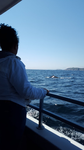 Our teen whale watching in Newfoundland - she was pretty happy!