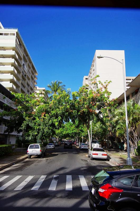 06-18-13 Waikiki, Coconut Island, Kaneohe Bay - IMGP6928.JPG