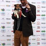 OIC - ENTSIMAGES.COM - Guy Henry at the  PupAid Puppy Farm Awareness Day 2015 London 5th September 2015 Photo Mobis Photos/OIC 0203 174 1069