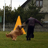 Obrona sportowa Abi - obrona (2).jpg