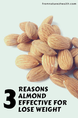 Almonds are Rich in Protein, Almonds are Rich in Fiber, Almonds Contain High Healthy Fat