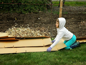 Photo: Helping with the food forest