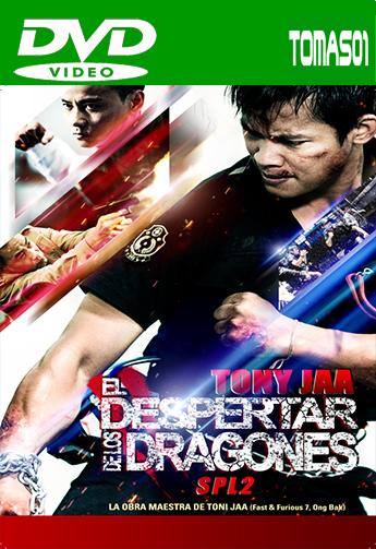 El despertar de los dragones (2015) DVDRip