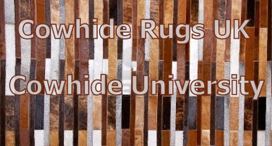 10 Interesting Facts About Cowhide