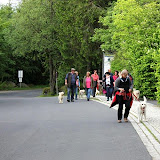 31. Mai 2016: On Tour auf der Luisenburg - Luisenburg%2B%25288%2529.jpg