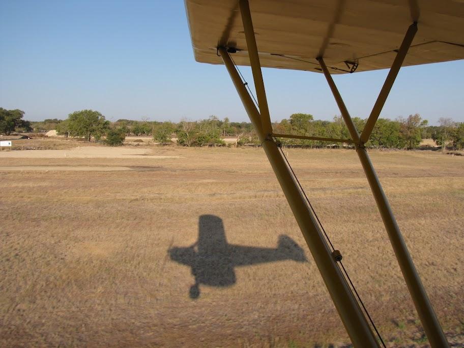 Cub shadow