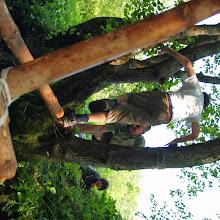 Vozlarija 890, Ilirska Bistrica 2007 - P0097256.JPG