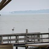 Fishing Cabin - 116_1637.JPG