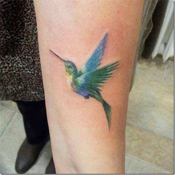 destaque-para-el-colibr-de-colores