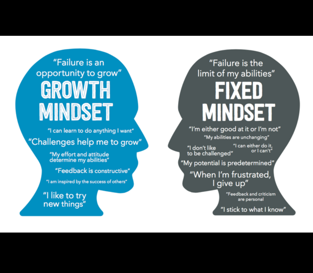 Growth Mindset and Brainology by Carol Dweck | Neuroscientia