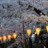 2014 Japan - Dag 1 - marjolein-IMG_0189-0115.JPG