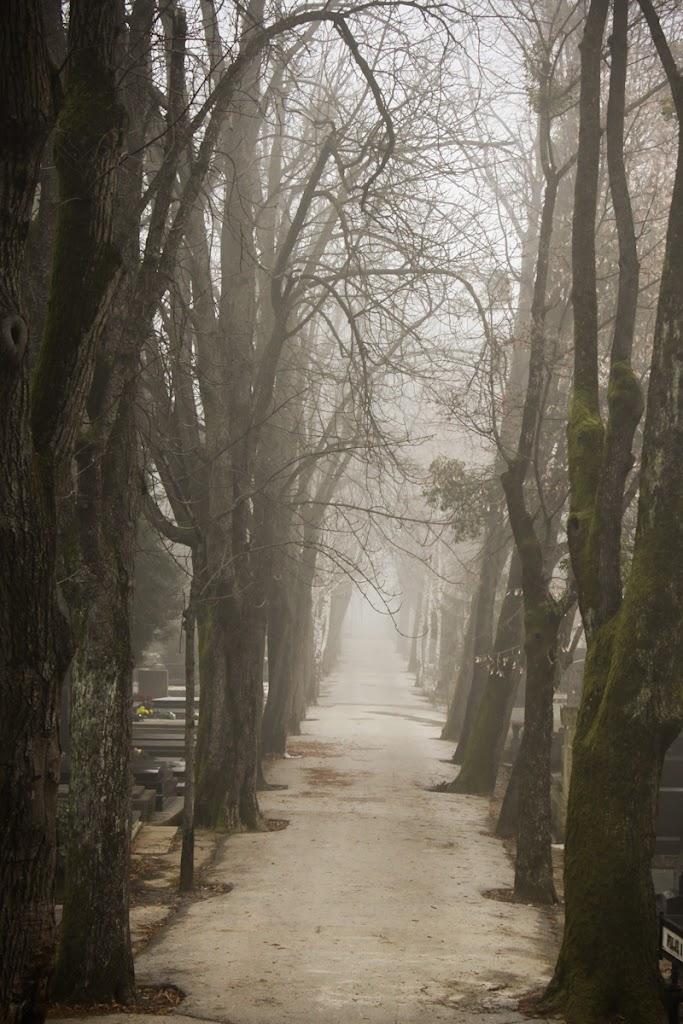 Zagreb - Vika-0139.jpg