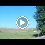 The Infamous Tutuilla Hawk video