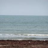 Surfside 2011 - 100_9479.JPG
