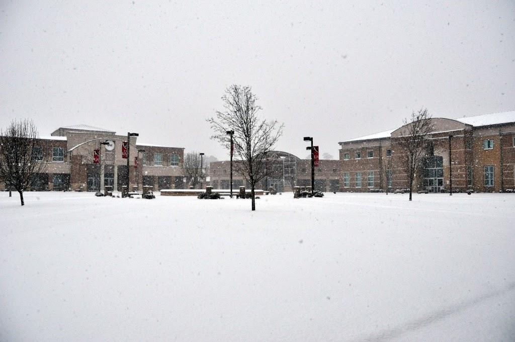 UACCH Snow Day 2011 - DSC_0012.JPG