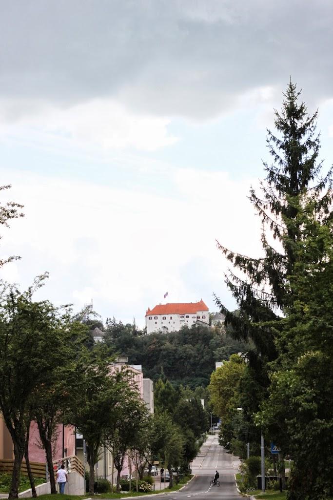 Logarska dolina - Vika-9026.jpg
