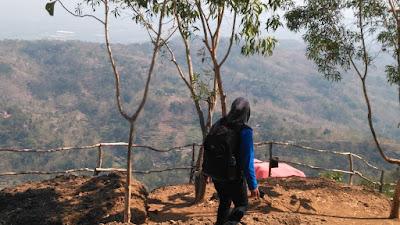 wisata di hutan pinus daerah mangunan