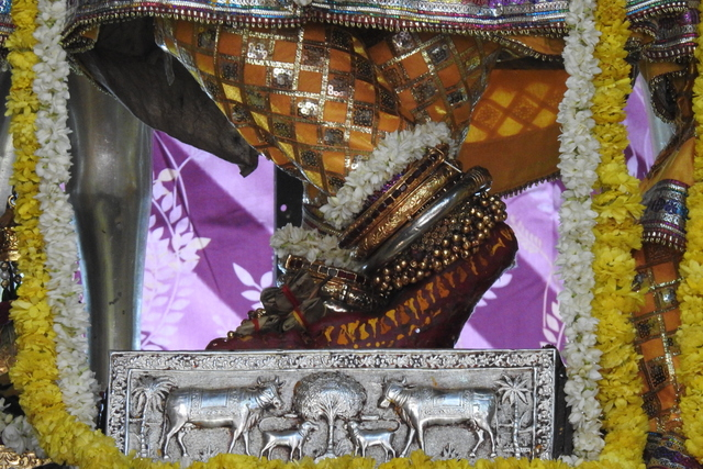 Radha Govinda Devji Deity Darshan 23 April 2016 (2)