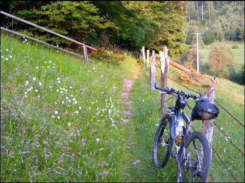 Spessart-Trail-Karte************* Diese Bilder sind Bestandteil einer von uns erstellten Spessart-Trail -Karte, die allerdings nicht öffentlich zugänglich ist. Mittlerweile haben wir an die 700 km Trails erfasst und recht genau dokumentiert. Wie man sieht, ist der Spessart ein Trail-Eldorado, sofern man sich hier auskennt.Viel Spass beim Schauen ;-))