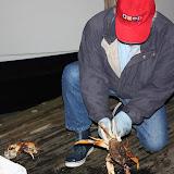 2010 Crab Feed - IMG_5595.JPG