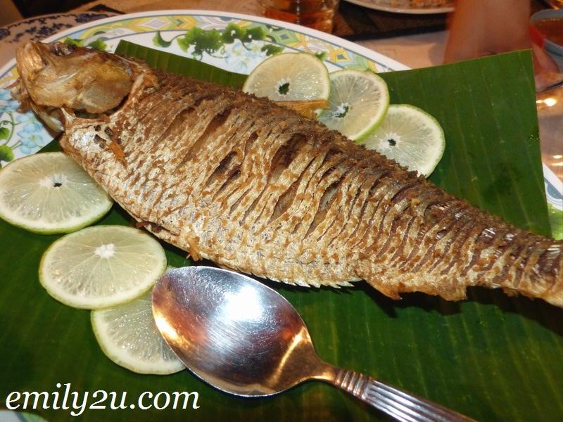 Nibong Seafood Restaurant Mukah Sarawak