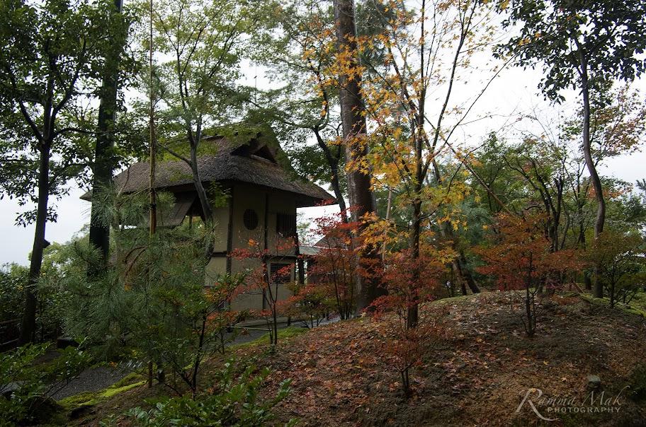 高台寺山上的小屋