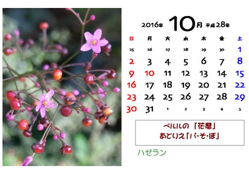 花暦2016