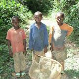 Entomologie : la nouvelle génération. Ebogo (Cameroun), 25 avril 2013. Photo : C. Renoton