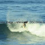 _DSC5824.thumb.jpg