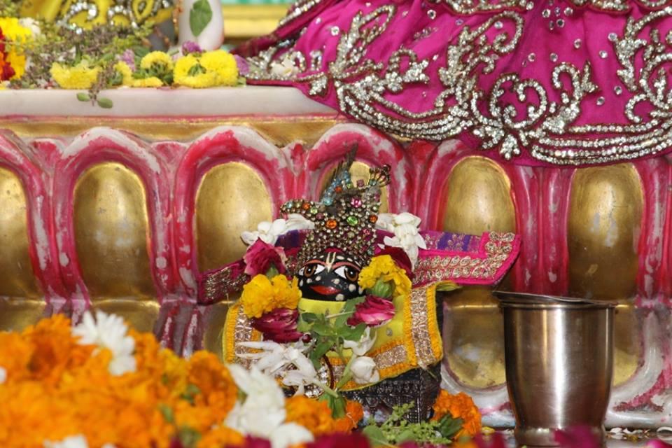 ISKCON Punjabi Bagh Deity Darshan 30 Mar 2016  (5)