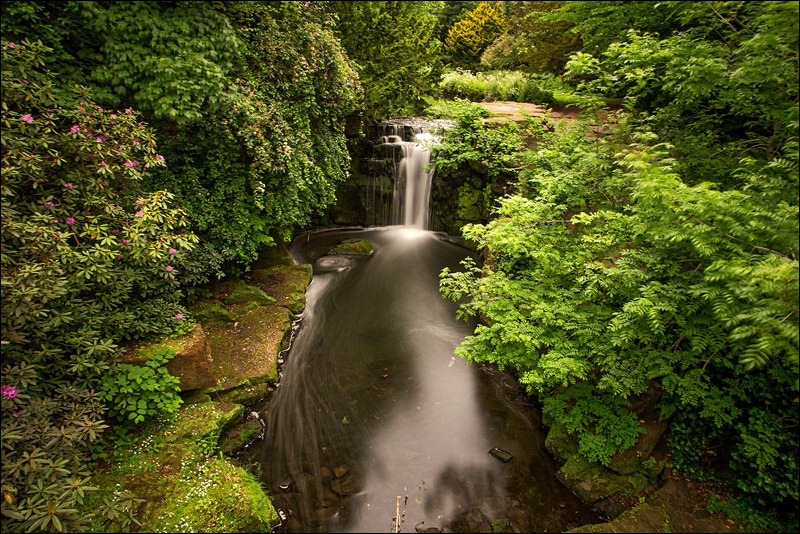 Jesmond Dene; Waterfall; Long Exposure