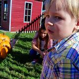 Pumpkin Patch 2014 - 116_4460.JPG