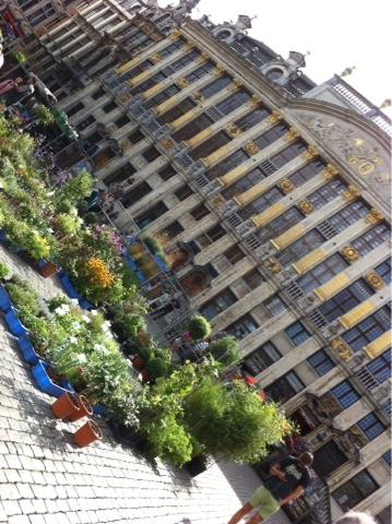 Fleurs place Bruxelles