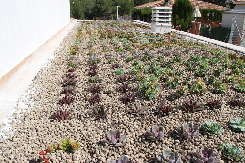 cubierta vegetal beneficios de las cubiertas vegetales  explicación green roof