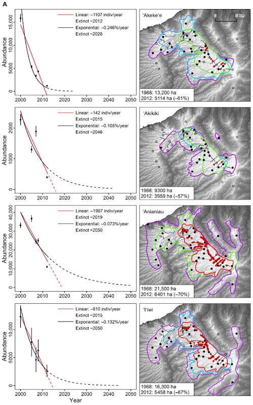 Population estimates (left panels) are from surveys conducted in 2000, 2005, 2007, 2008, and 2012 across both the interior and exterior portions of the Alaka'i Plateau (with error bars representing the 95% CI of each estimate). Linear and exponential population change models fitted to the 2000–2012 data are projected from 2013 to 2050 or estimated year of extinction (when abundance is less than 30 individuals, which is a quasi-extinction level). Graphic: Paxton, et al., 2016 / Science Advances