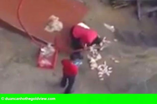 Hình 1: Gà KFC rửa trên sàn bê tông khiến người tiêu dùng bàng hoàng