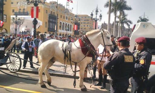 Caballo explotado en la Plaza Mayor de Lima.