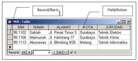 Pengenalan File tabel record dan field