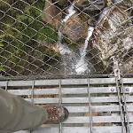 On the trek, well made suspension bridge