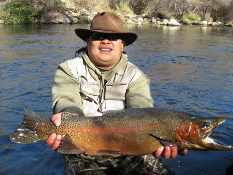 Tour half day fly fishing with guide putah creek council for Putah creek fly fishing