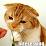 Dartagnan LearnDart's profile photo