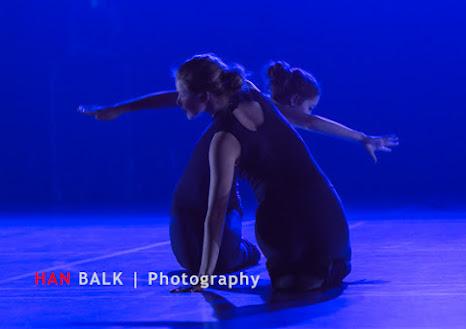 Han Balk Voorster Dansdag 2016-3805.jpg